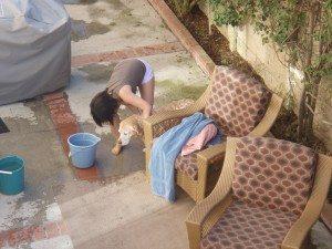 Sammy Gets a Bath