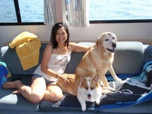 The Yellow Lab and the Pembroke Corgi go on Vacation!