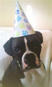 Happy Birthday Kc!