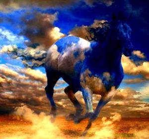 horse2014