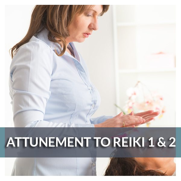Attunement to Reiki 1 & 2 - Reiki Fur Babies