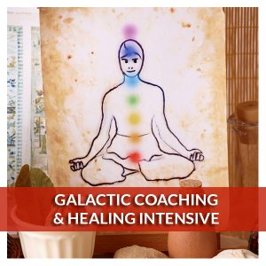 Galactic Coaching and Healing Intensive - Reiki Fur Babies
