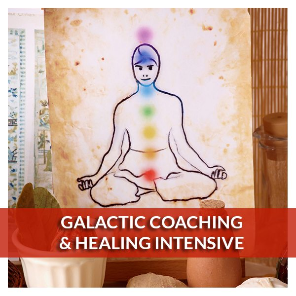 Galactic Coaching and Healing Intensive - Reiki Fur Babies