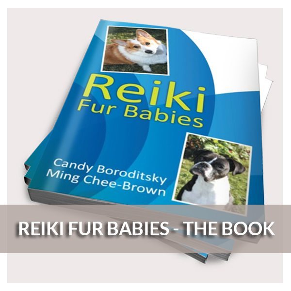 Reiki Fur Babies - The Book