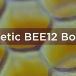 BEE12boosters